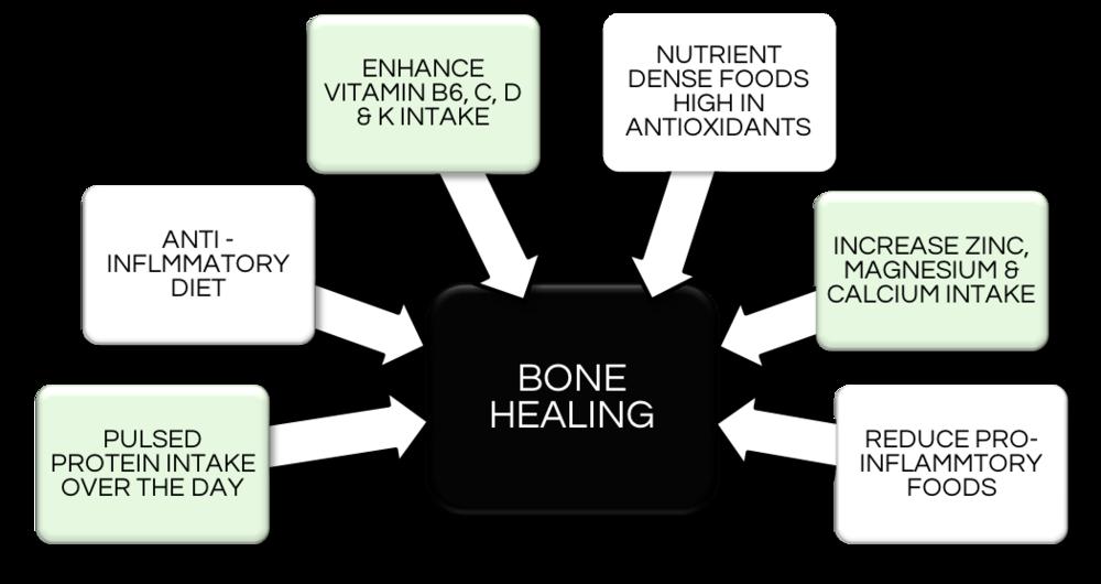 bone healing.png
