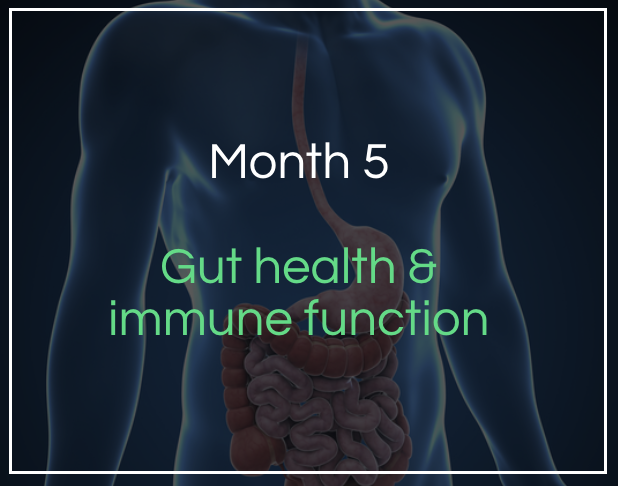 Month 5 - Gut and immune function - Learn about how these 2 key areas can impact your CrossFit performance. Access to our gut healing and immune boosting protocols.