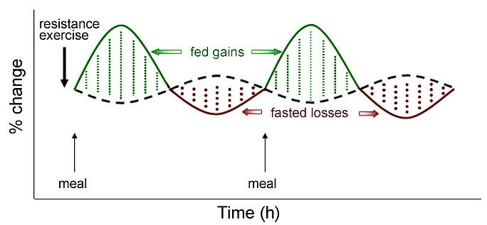 graph-2.jpg