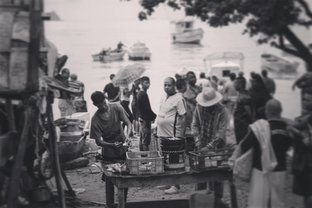 Buying fish straight off the Beach in Taganga, Colombia. Only Wild fish are high in Omega 3