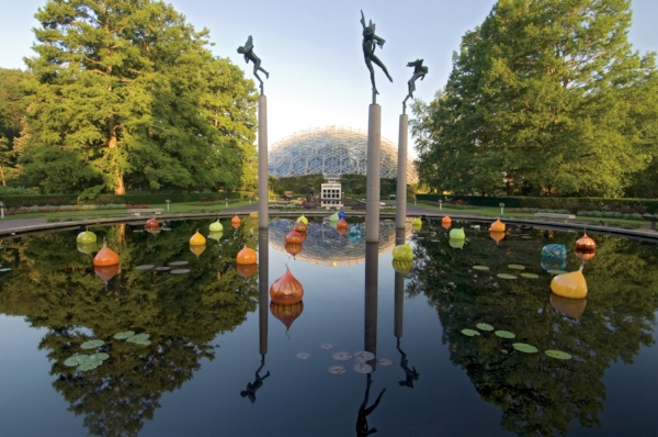 Image courtesy of  Missouri Botanical Garden .