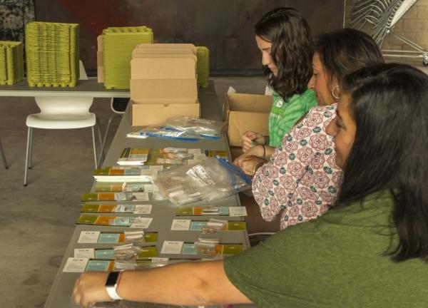 sorting seeds.JPG