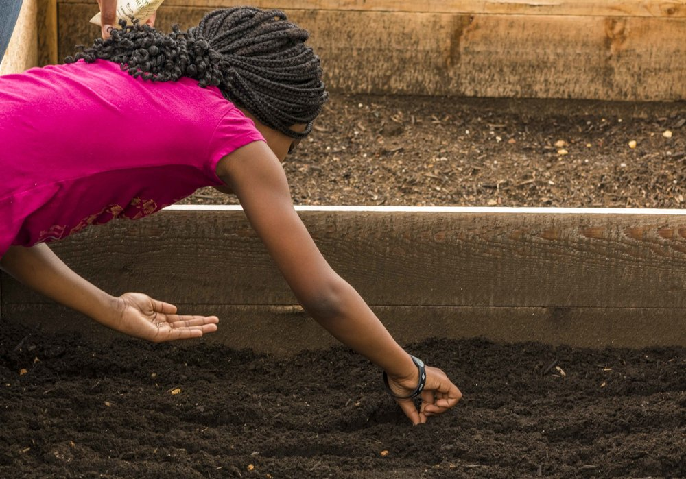 Pop Up Produce - Bruns Planting with PBS (16 of 31).jpg