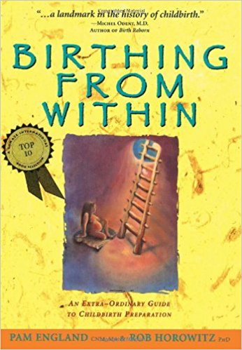 Birthing from Within - Pam England