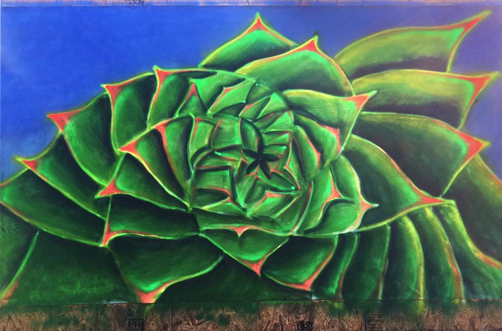 FHN - Succulent 84 x 144.jpg
