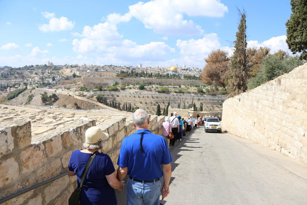 Walk in Jesus' footsteps - Kneel in the Grotto where Jesus was born in Bethlehem. Dip your feet into the Jordan River. Follow the Way of the Cross along the streets of Jerusalem. Discover anew the humanity of Jesus.