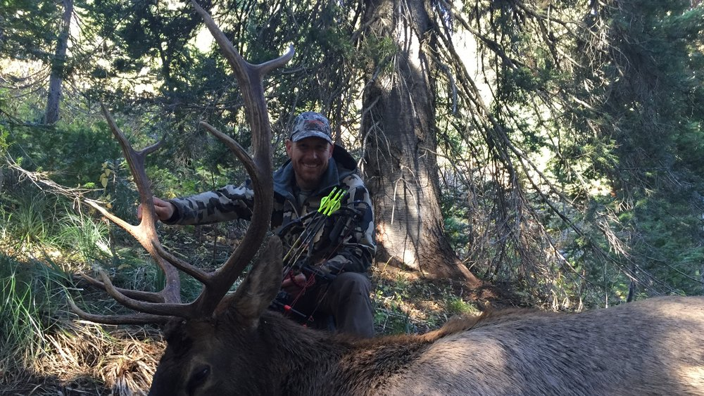 By no means a record book elk, this is my 2016 public land archery bull.