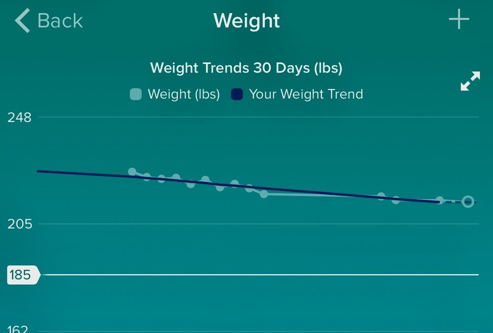I was hit and miss with logging weight in the Fitbit app.  We religiously logged it manually, though.