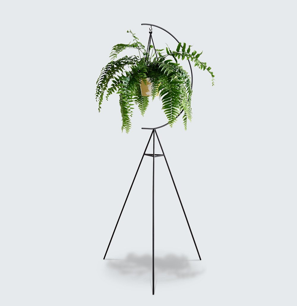 NEW CRESCENT PLANT STAND | Modern Times