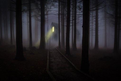 foggy-545838__340.jpg
