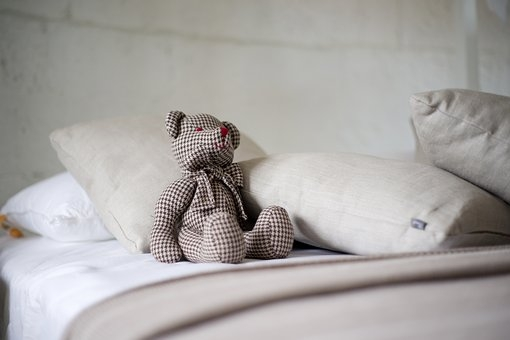 bear-2439923__340.jpg