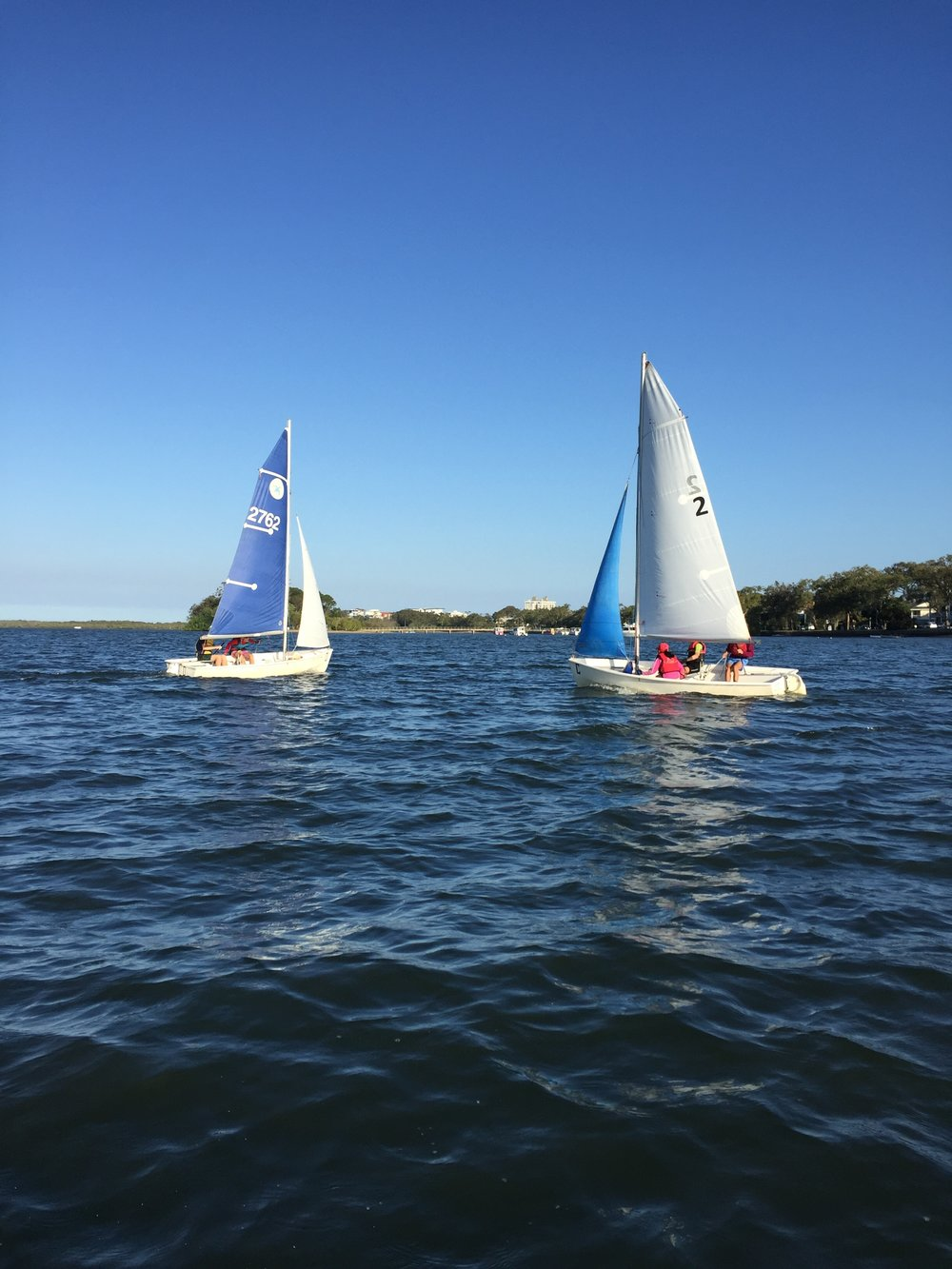 Schools Sailing.JPG