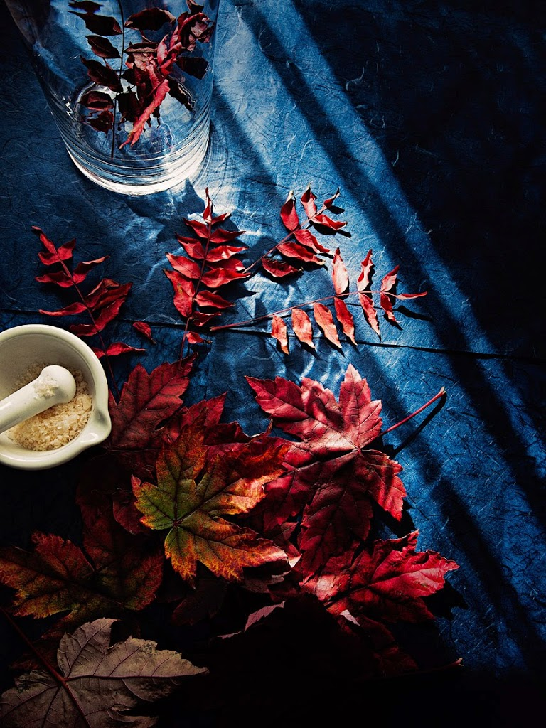 food and still life photography #JapanesePeasant #Autumn #MapleLeaves #Colours #Textures #Indigo #Washi #RicePaper #Pink #HimalayanSalt #MortarAndPestle #Glass #Vase #Sun #Light #SophiaTerraZiva