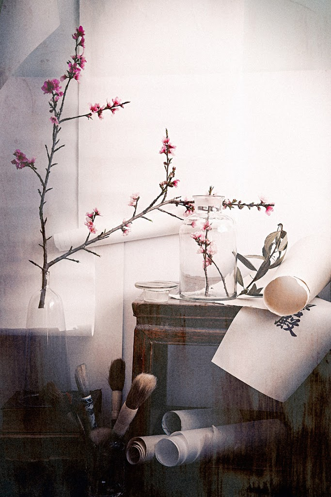 FirstDayOfSpring_OldMonk_Calligraphy_Brushes_Blossoms_NectarineBrunches_Cloche_GlassJar_SophiaTerraZiva