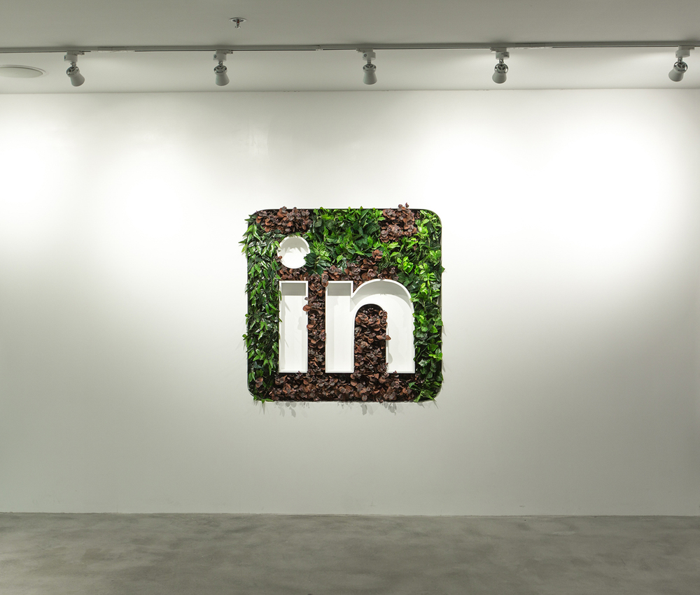 Linkedin-Logo-Bangalore