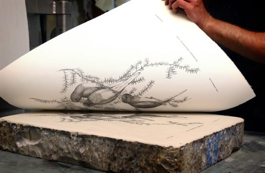 Stone Lithography.jpg