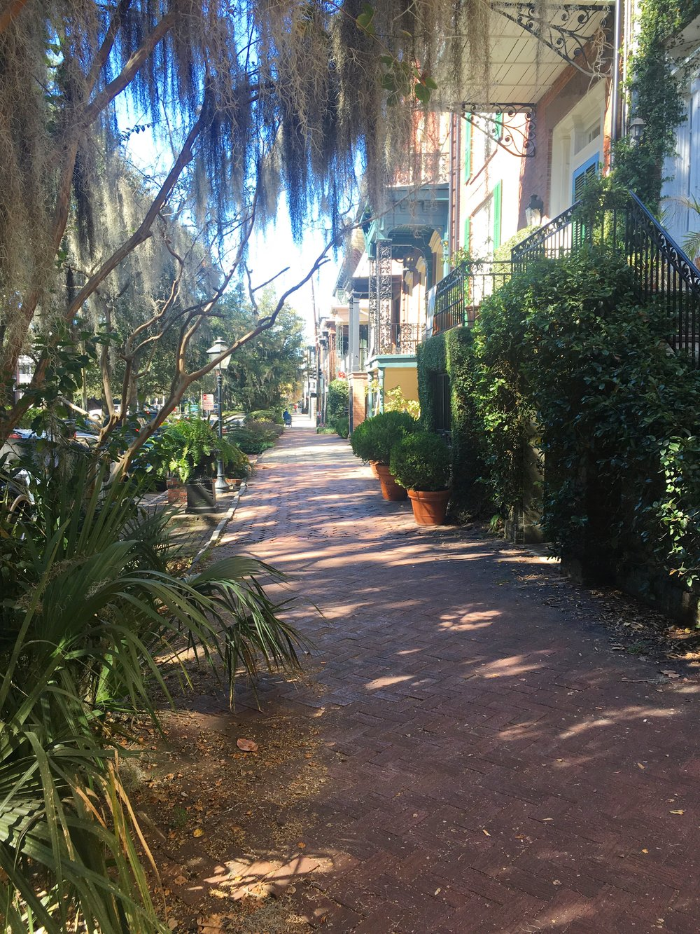 Savannah-travel-guide