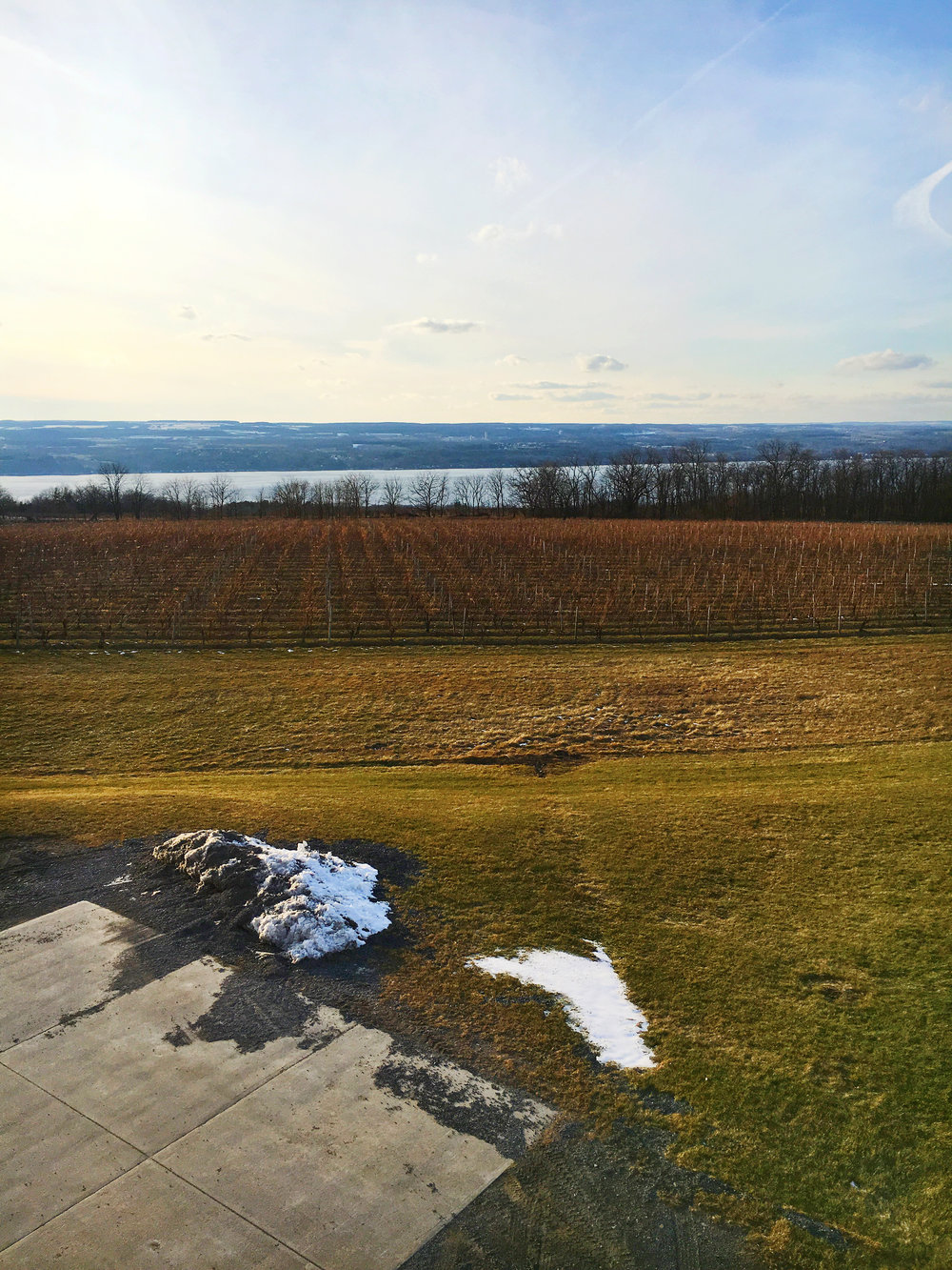Best-Wineries-on-Seneca-Lake