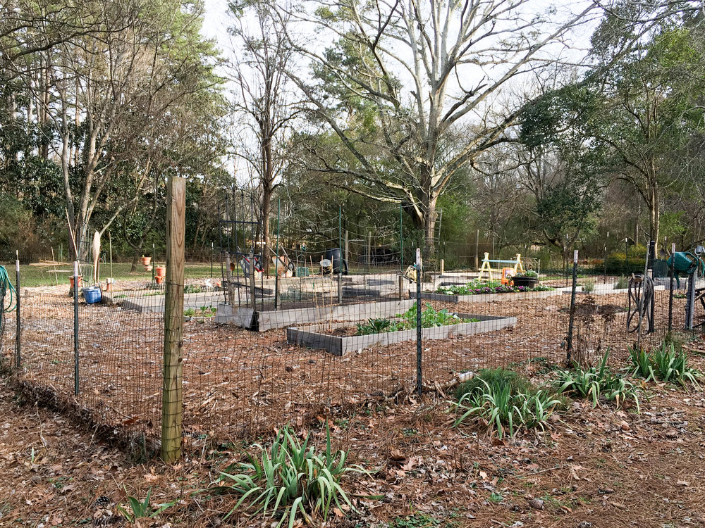 Medlock Park Community Garden, January 17, 2017