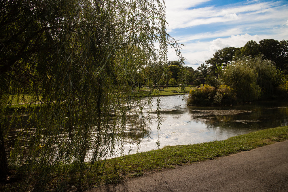 avondale-park_15766556938_o.jpg