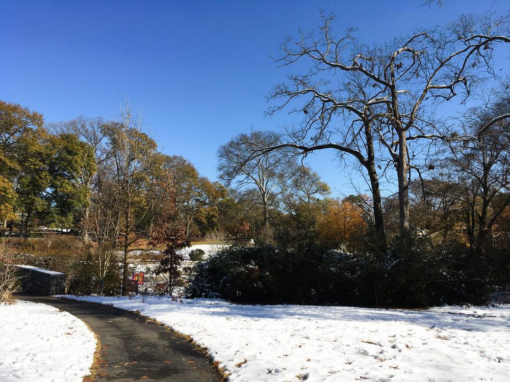 Springdale Segment, December 10, 2017