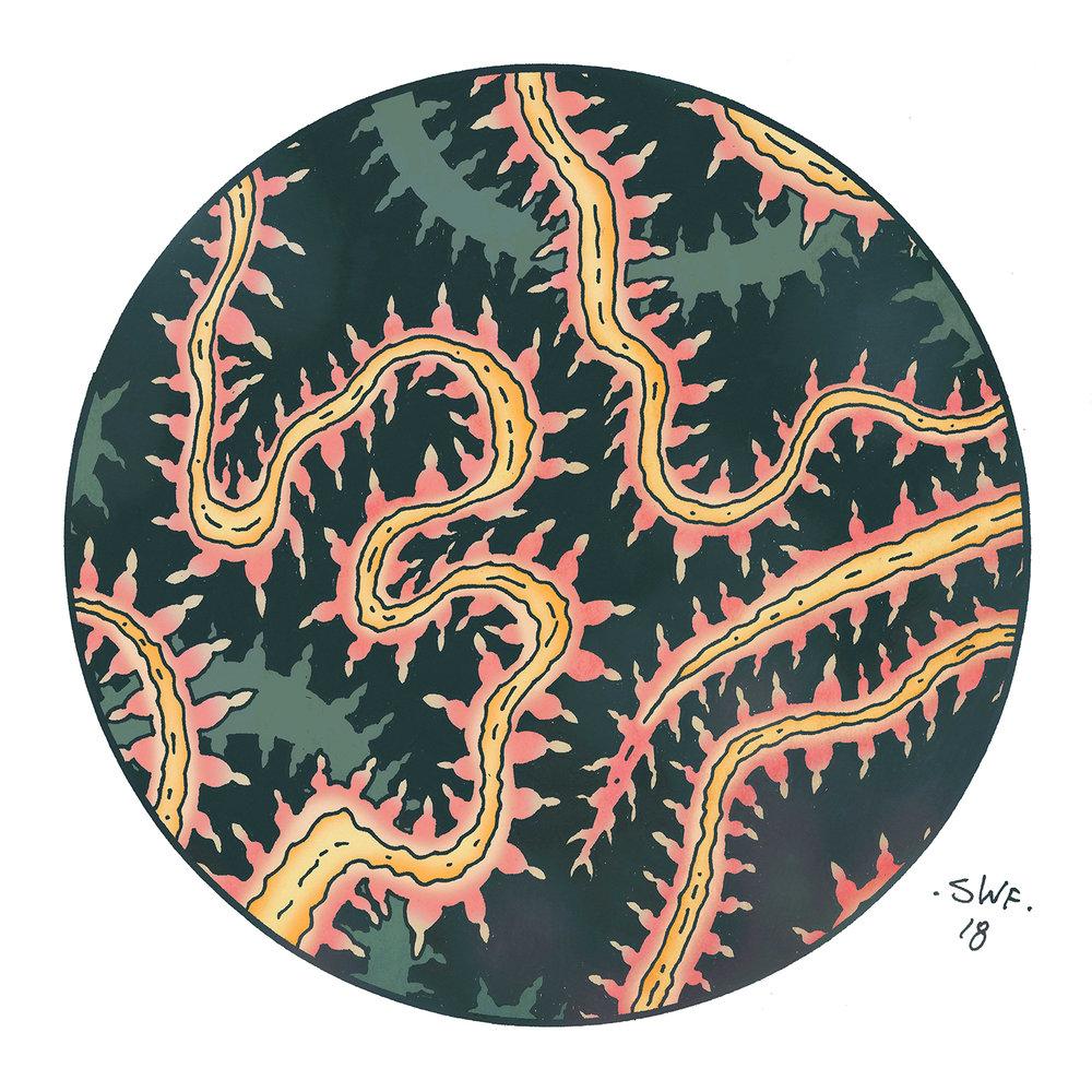 Fire Worm(small).jpg