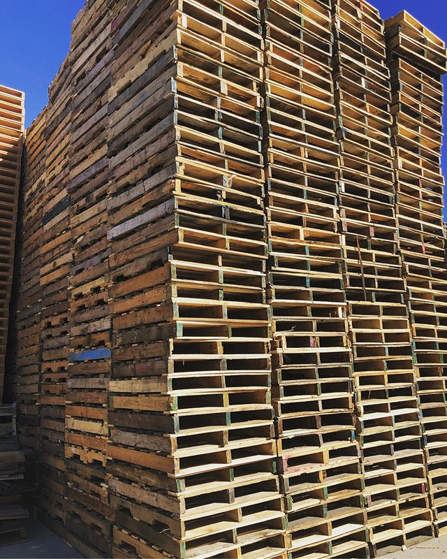 "Can your company utilize a 40""x32"" pallet? Or maybe you just need a few for a DIY project. This is one of our most affordable pallets. Give us a call or request a quote on our website. #Pallets #Pallet #Lumber #Wood #Warehouse #Shipping #Logistics #Trucking #Hauling #BayArea #Newark #Stockton #California #Custom #BrandNew #Standard #SmallBusiness #FamilyOwned #DIY"