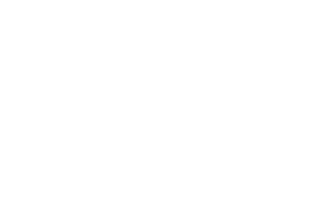 OFFICIAL SELECTION - AltFF Alternative Film Festival - 2017.png