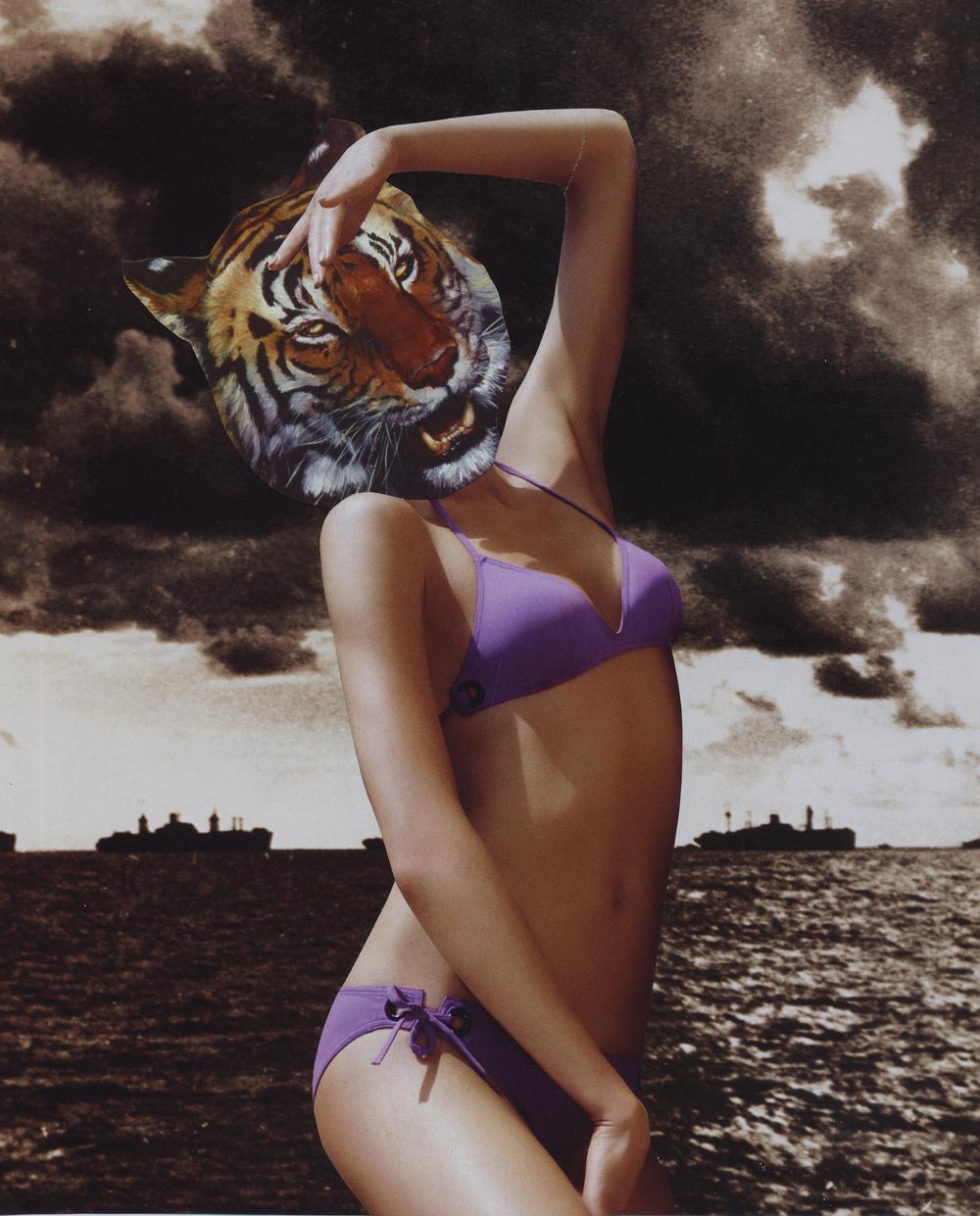 Tiger Bombshell, 2008 - Colleen Cunningham