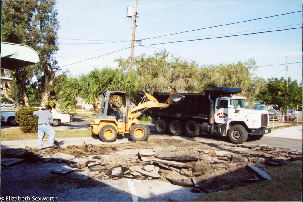 palm landscape demolition begins-1.jpg