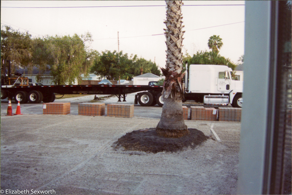 palm landscape parking area ready for pavers-1.jpg