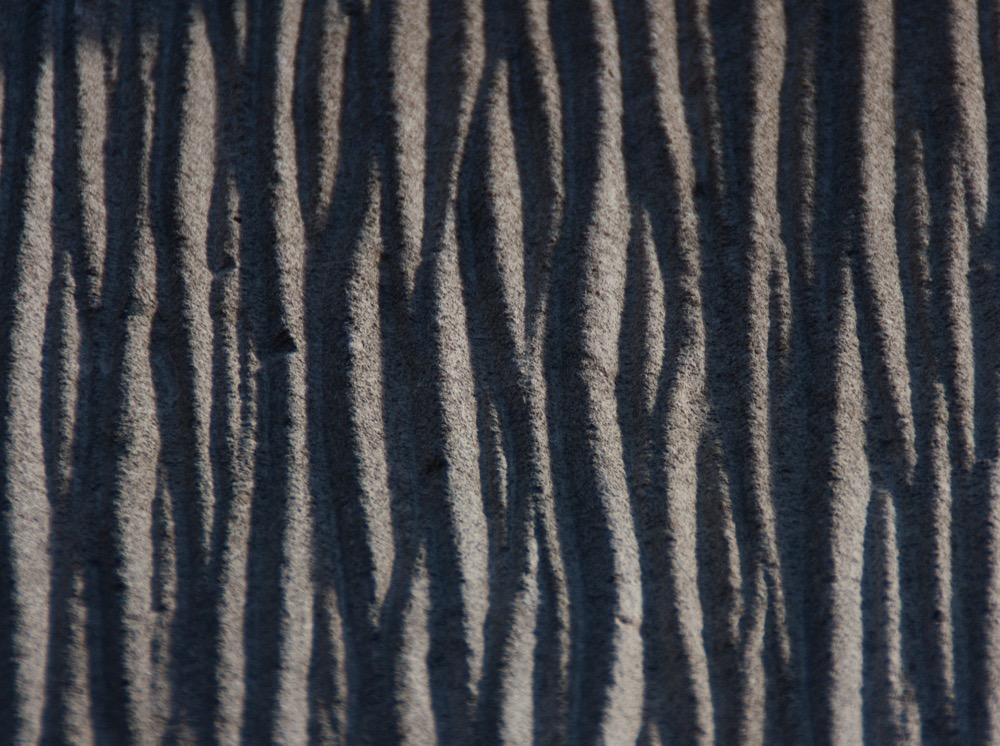 detail of the facade texture resembling tree bark,