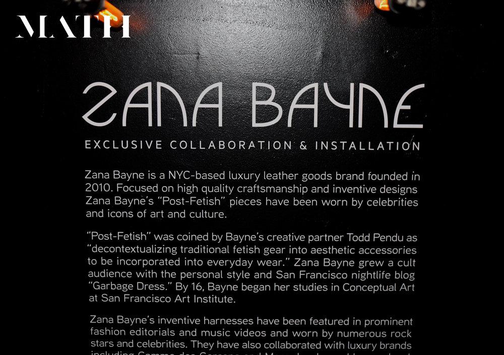 Zana Bayne_Ginger Hollander 2.jpg