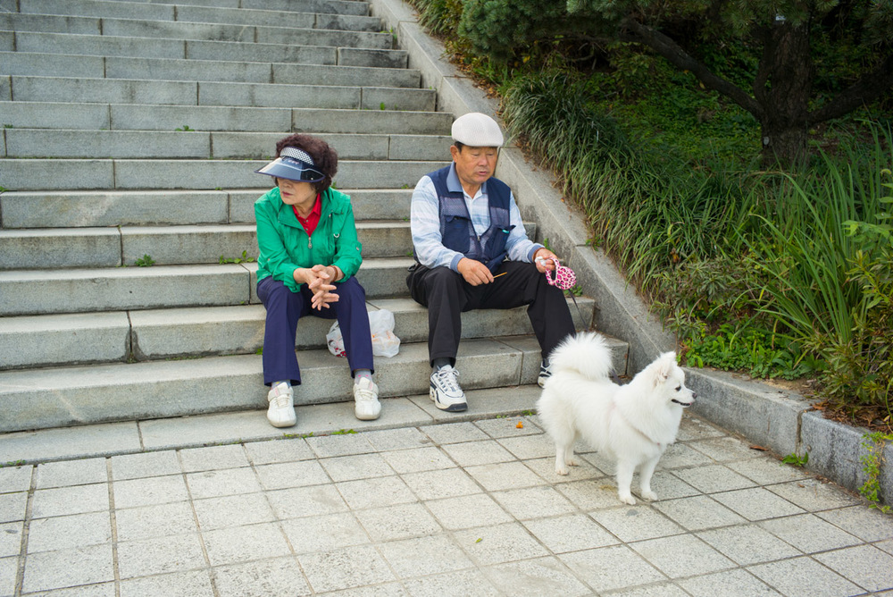Couple with Dog, Seoul Olympic Park