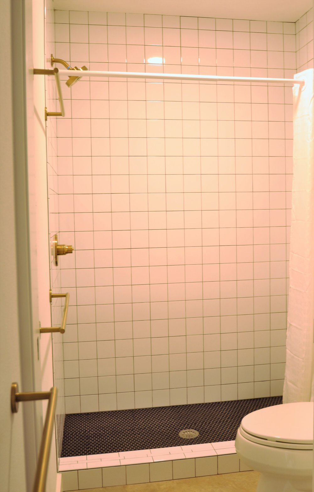 DS Shower.jpg
