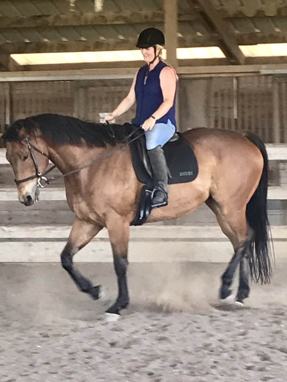 s Here is Phoebe Harper showing Mikey off. He is the reason we do this stuff!  He rounds off so well and happily back to work! Be it easy work!