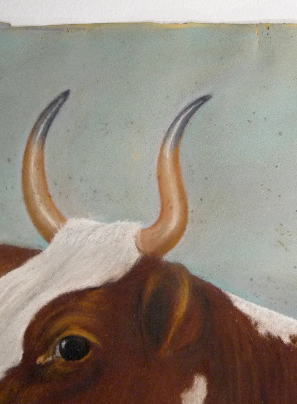Detail of  Ayrshire Cow  before conservation, showing mould spots on pastel surface.