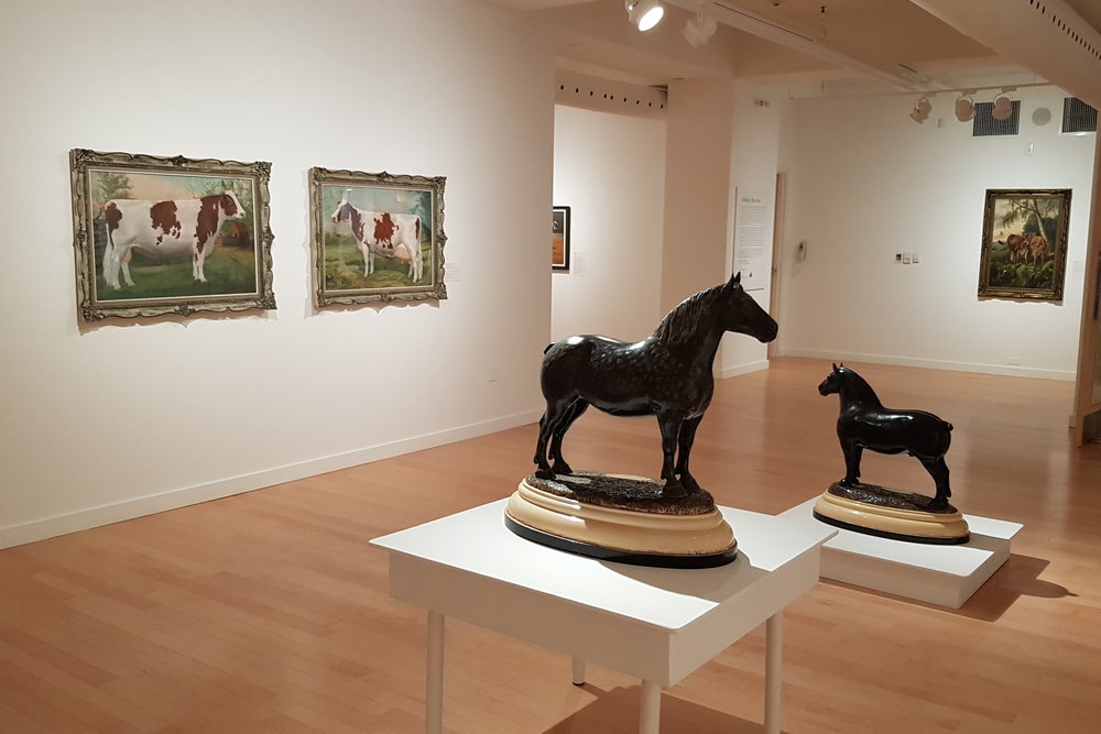 Ayrshire Bull  and  Ayrshire Cow  on display in the exhibition  Ross Butler: Branding, Butter and Bulls , Woodstock Art Gallery.