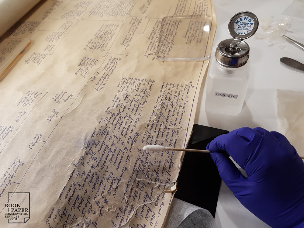 Tape removal is executed using solvents during the conservation treatment of a client's family tree.