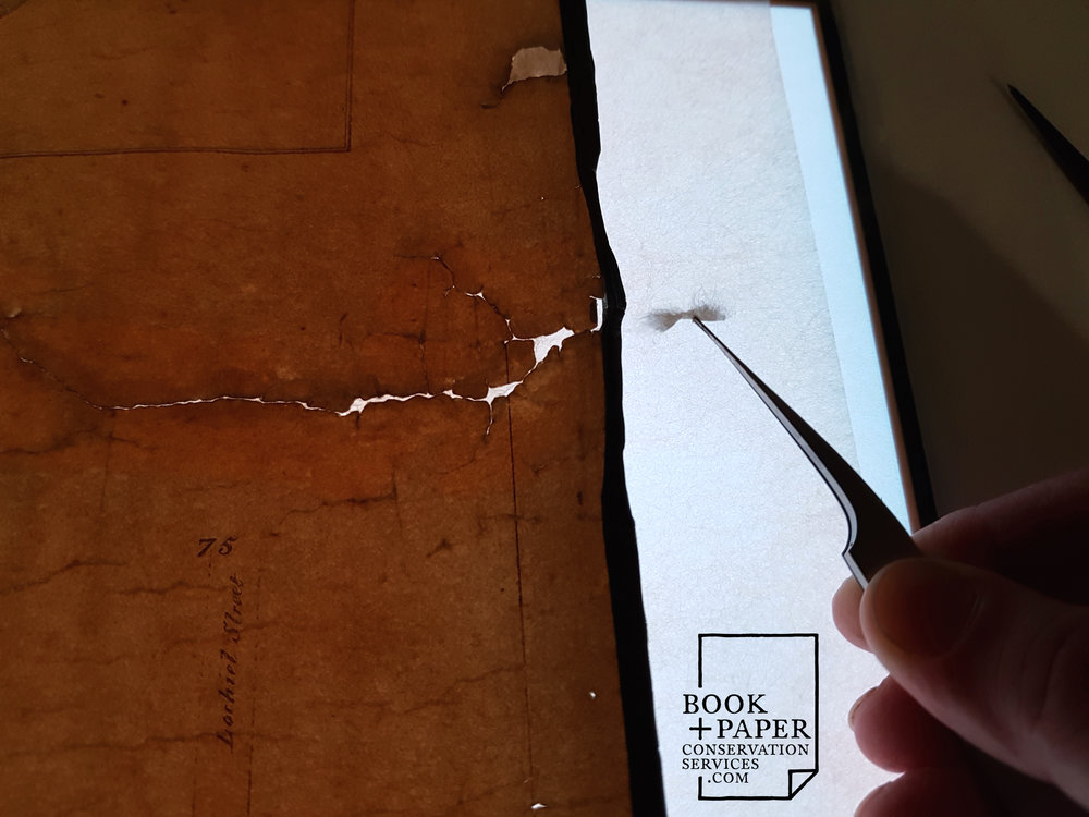 Japanese tissue repairs applied to the verso of the map, with LED light pad underneath.