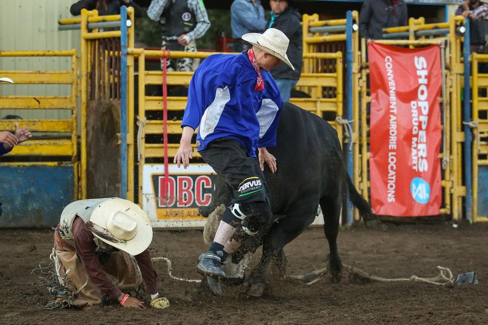 Bull fighter 4.jpg