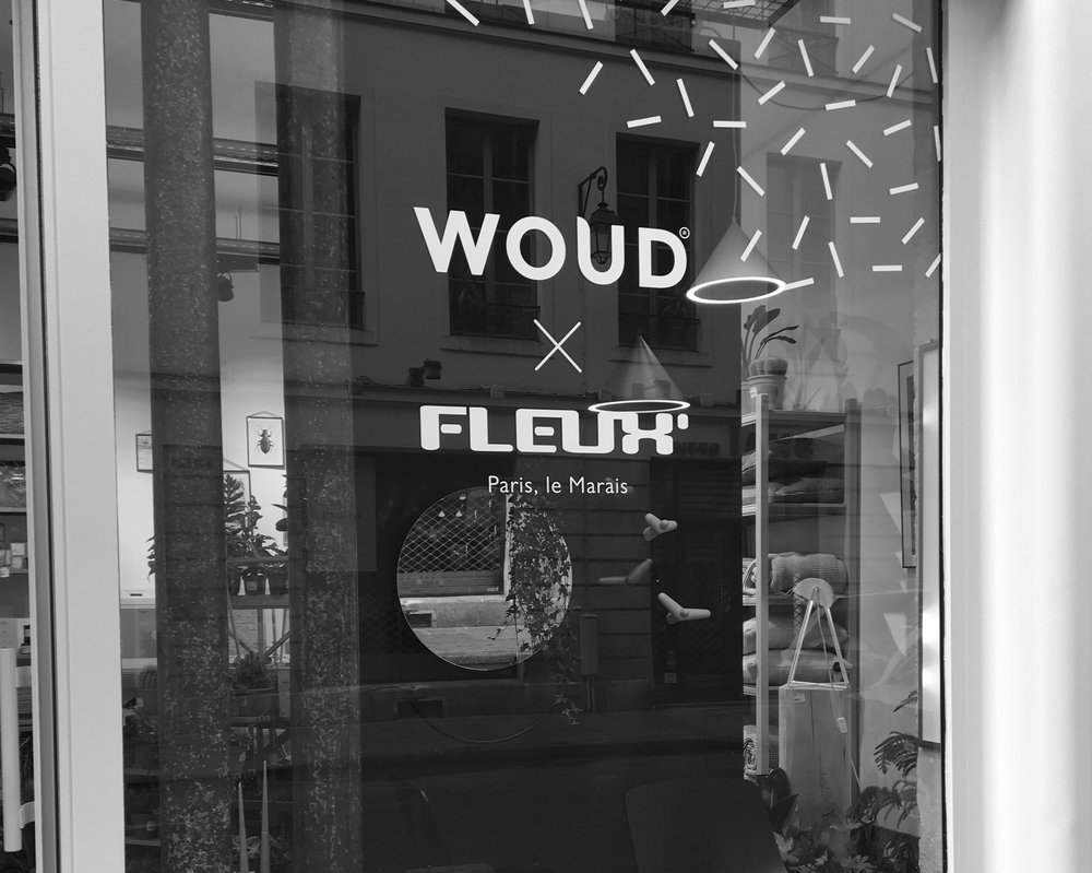 PRESS DAY AT FLEUX' – WOUD   October 2017 – The new collection by WOUD is showcased during the press day in the FLEUX' store. Journalists, stylists and influencers from the univers of design are invited to stop by and discover the news.   Octobre 2017 - La nouvelle collection de WOUD est présentée lors de la journée presse du magasin FLEUX. Journalistes, stylistes et influenceurs de l'univers de design sont invités à venir découvrir les nouveautés.