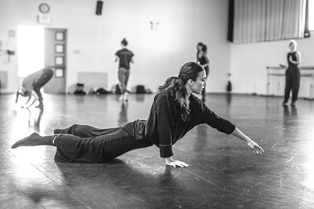 a favorite moment observing warm up for a piece by @kateharpootlian this past week at @markmorrisdance