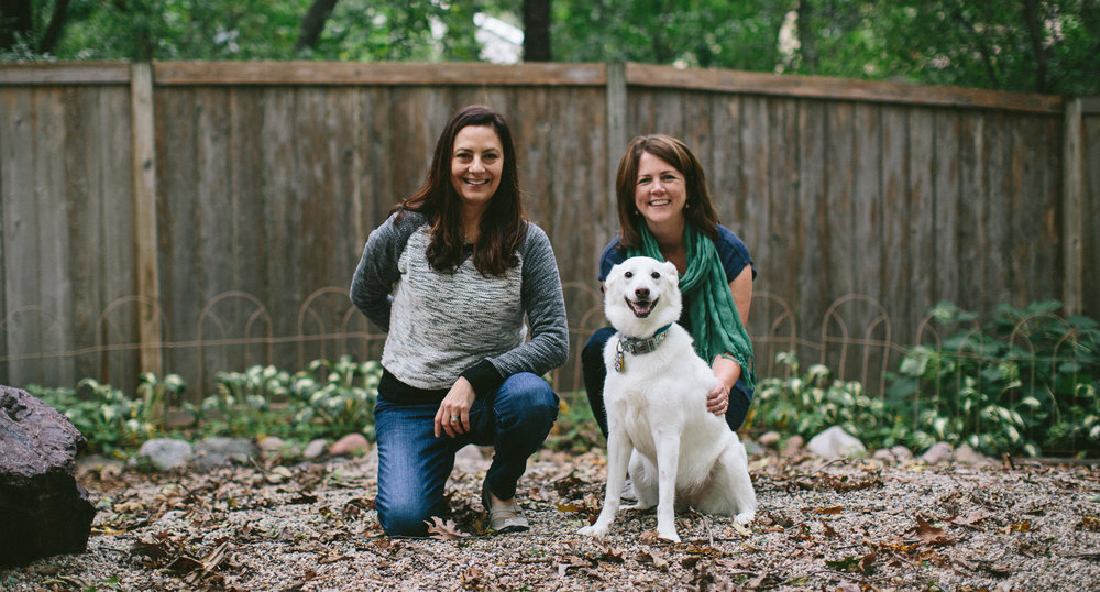 Dog Evolved ladies training happily