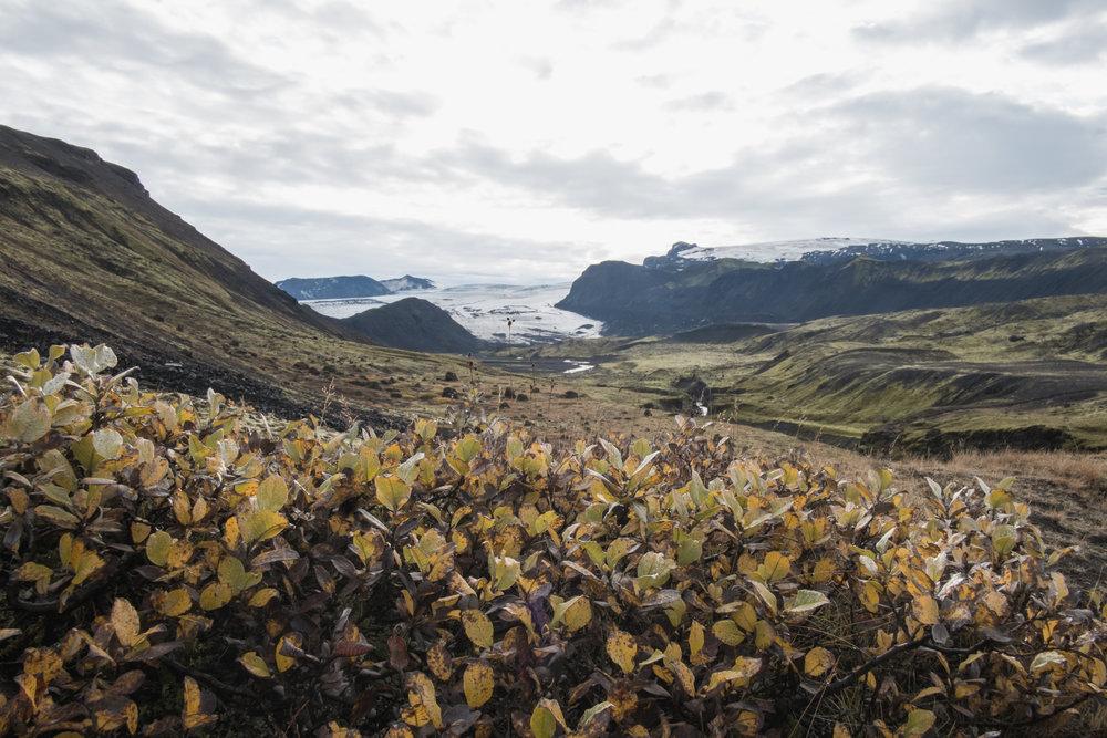 20131003-021-Iceland_Travel_Editorial.jpg