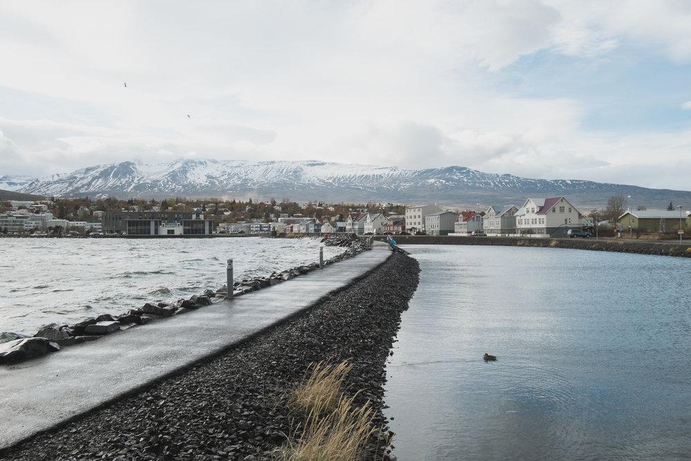 20131010-056-Iceland_Travel_Editorial.jpg