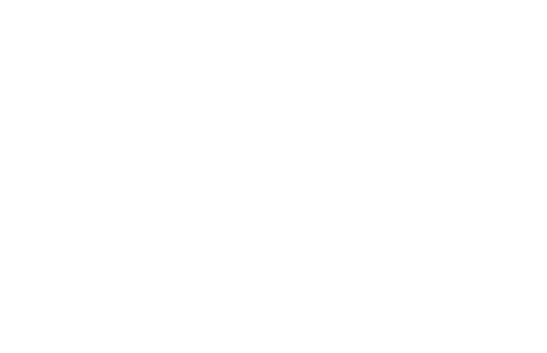Plant Based Dallas