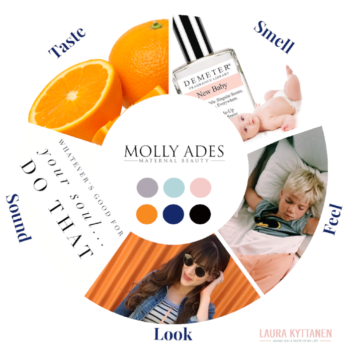 sensorial branding wheel MOLLY_v2.png