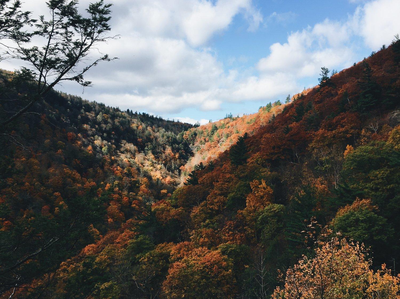 What to Do in Hudson NY — Mikki Brammer