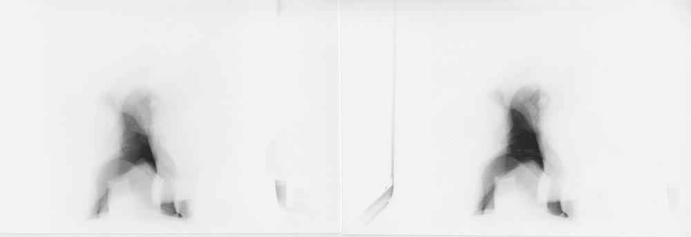 Frank-White-Stereo-Pair-2.jpg